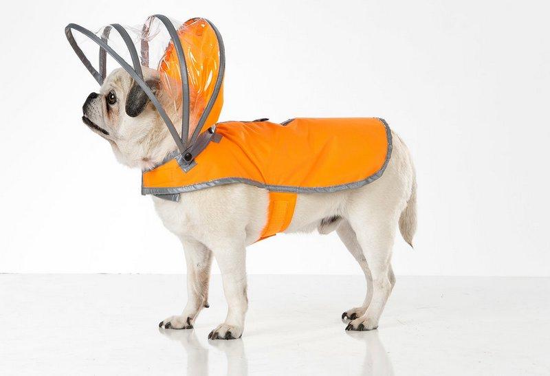 Дождевик для собаки от Push Pushi