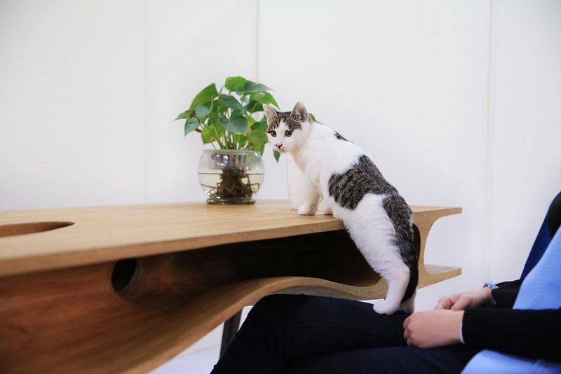 стол-лабиринт для кошек