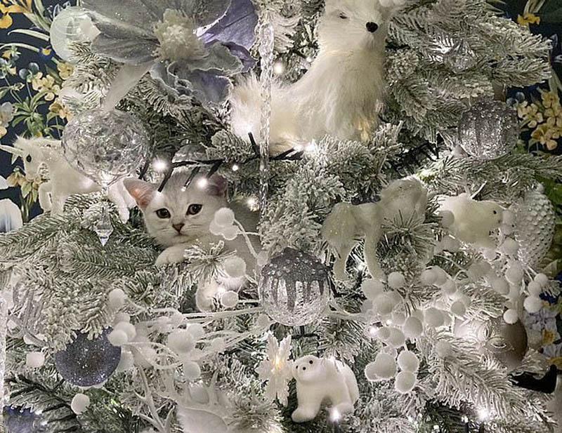 Кошка на рождественской елке