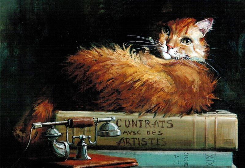 Коты для красоты
