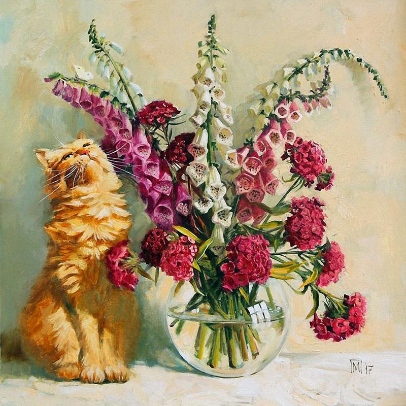 Наперстянки, гвоздики и рыжий кот